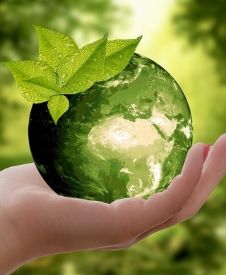A photomanipulation of a hand holding a globe of plants.