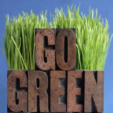 "A sign reading, ""Go Green"" placed in front of grass."