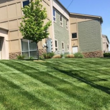 Lawn Fertilizer Service Nashua