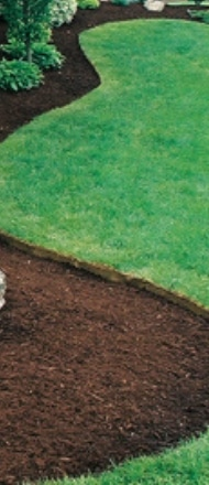 Turf Edging Service